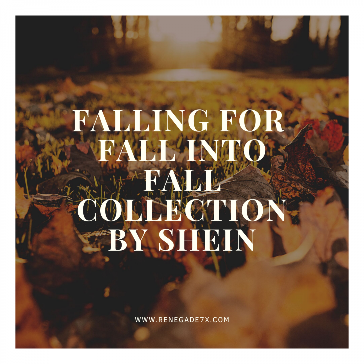 Falling for Fall into Fall collection by shein