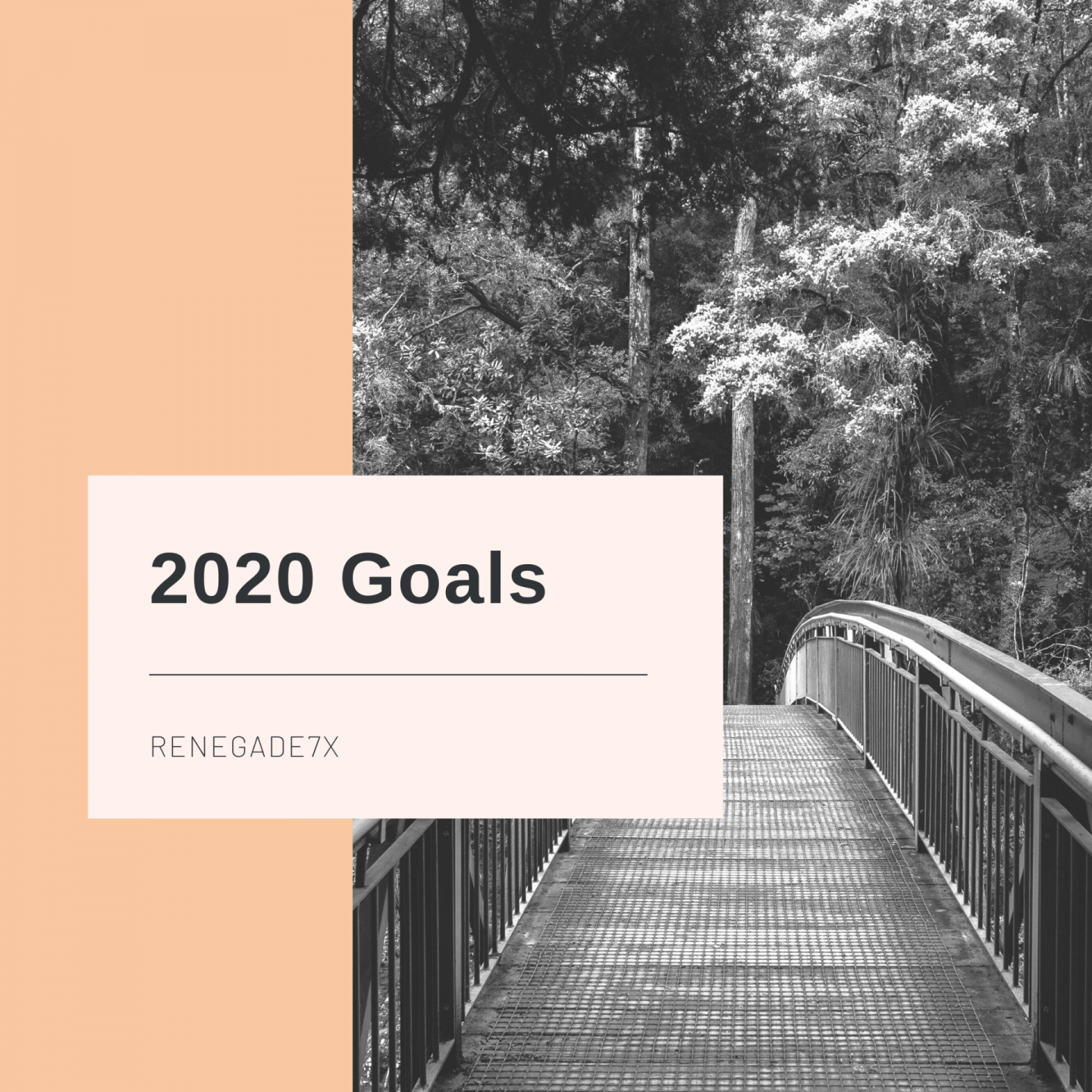 Small but significant Goals for 2020